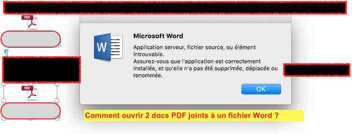 Pourquoi ne puis-je pas ouvrir le fichier Word?