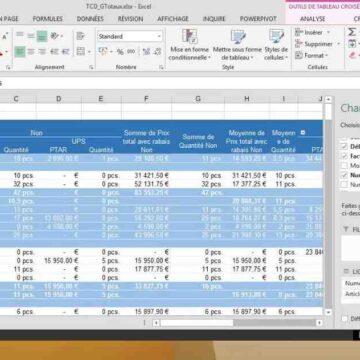 Qu'est-ce qu'un tableau croisé dynamique Excel 2007 ?