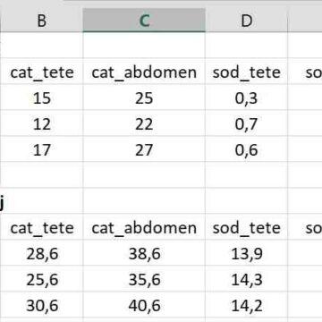 Comment faire des calculs dans un tableur ?